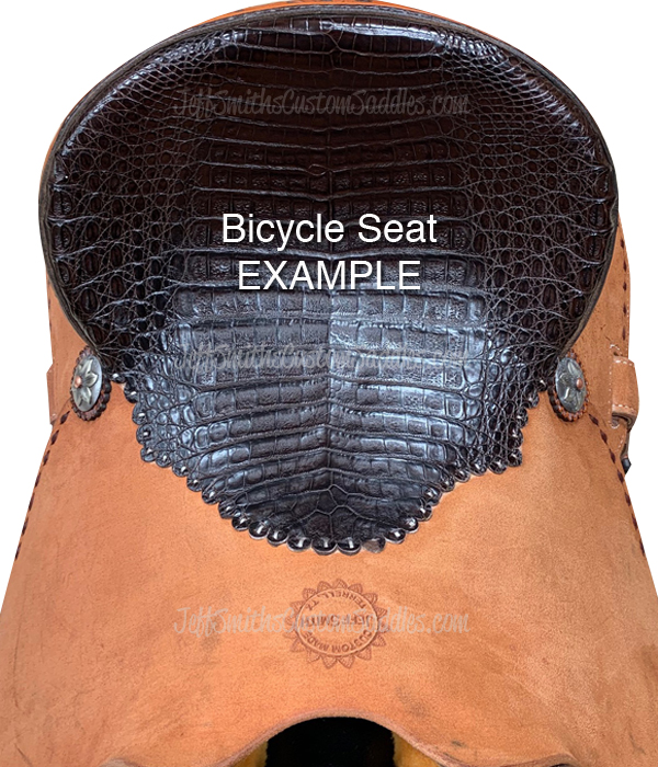 SeatPics_Bicycle Seat Example